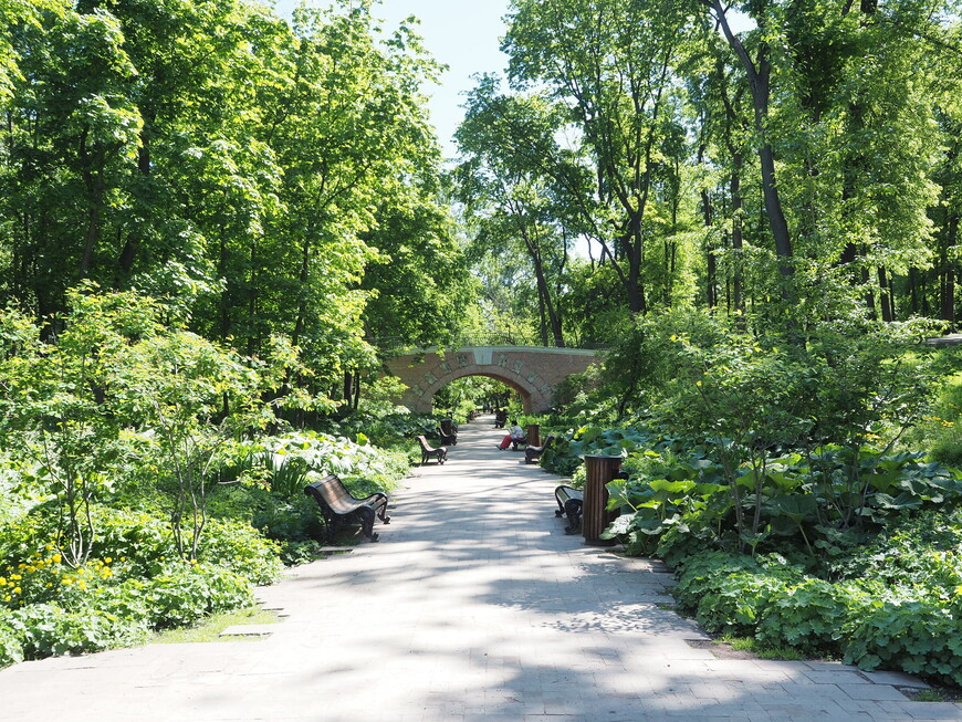 После посещения музея приятно пройтись по Нескучному саду. Сад привели в порядок - много зелени и скамеек.
