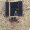 Сан Джиминьяно, зритель), экскурсии по Флоренции и Тоскане с частным индивидуальным гидом на русском языке