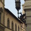 Флоренция, декорации на улице Строцци , экскурсии по Флоренции и Тоскане с частным индивидуальным гидом на русском языке