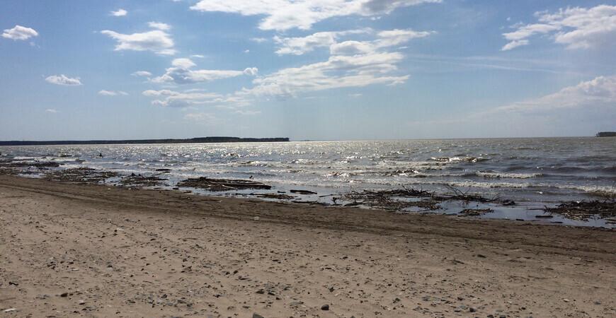 Нудистский пляж в Новосибирске
