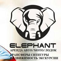 Elephant (PrimorSky)