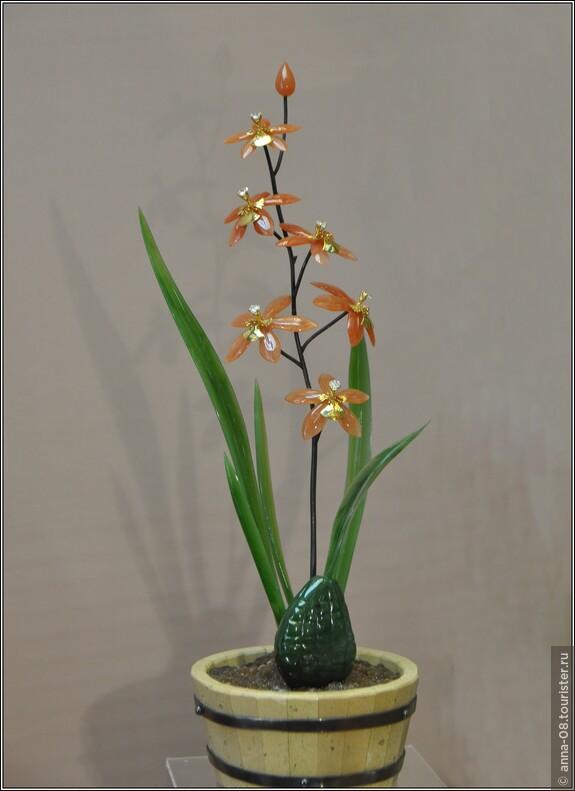 «Орхидея Онцидиум-Варикосум»