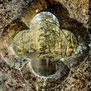 Роминта: в краю легенд, лесов, воды и камня