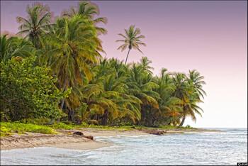 Власти Доминиканы назвали сообщения о подозрительности смерти туристов на курортах фейком