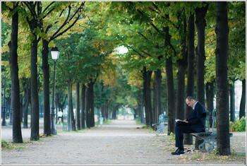 В Париже появятся четыре «городских леса»