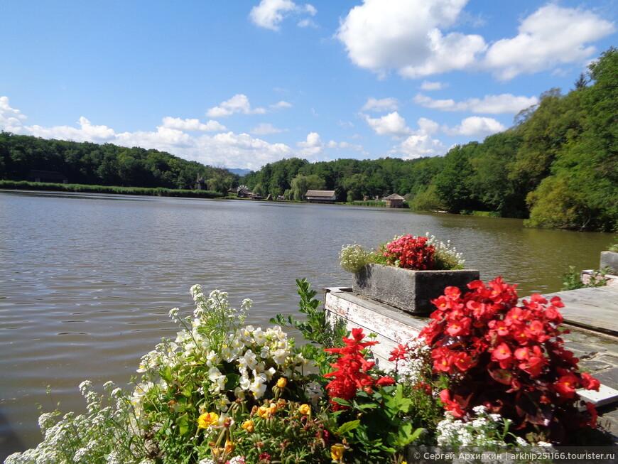 Озеро на территории музея Астры