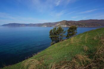 Учёные: вода в Байкале оказалась токсичной