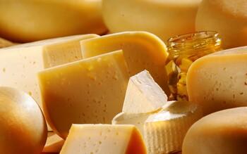 В Подмосковье пройдёт Фестиваль сыра