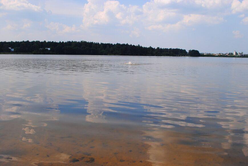 Рыбалка в рыбном хозяйстве ОАО «Бисерово»