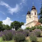 Фестиваль лаванды в Венгрии