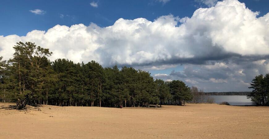 Пляж «Белая гора» в Сестрорецке