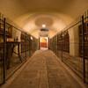 винные погреба хозяйства, экскурсии по Флоренции и Тоскане с частным индивидуальным гидом на русском языке