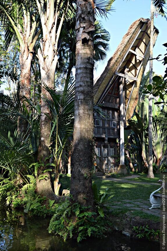 Домик в стиле острова Сулавеси в парке птиц