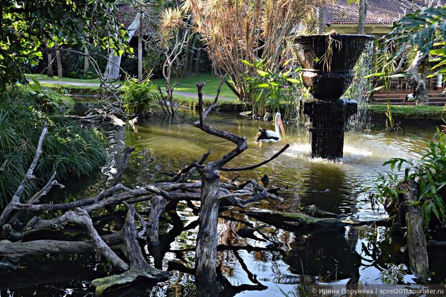 Уютные места в парке: фонтаны, прудики...