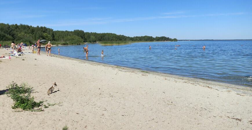 Пляж Калды
