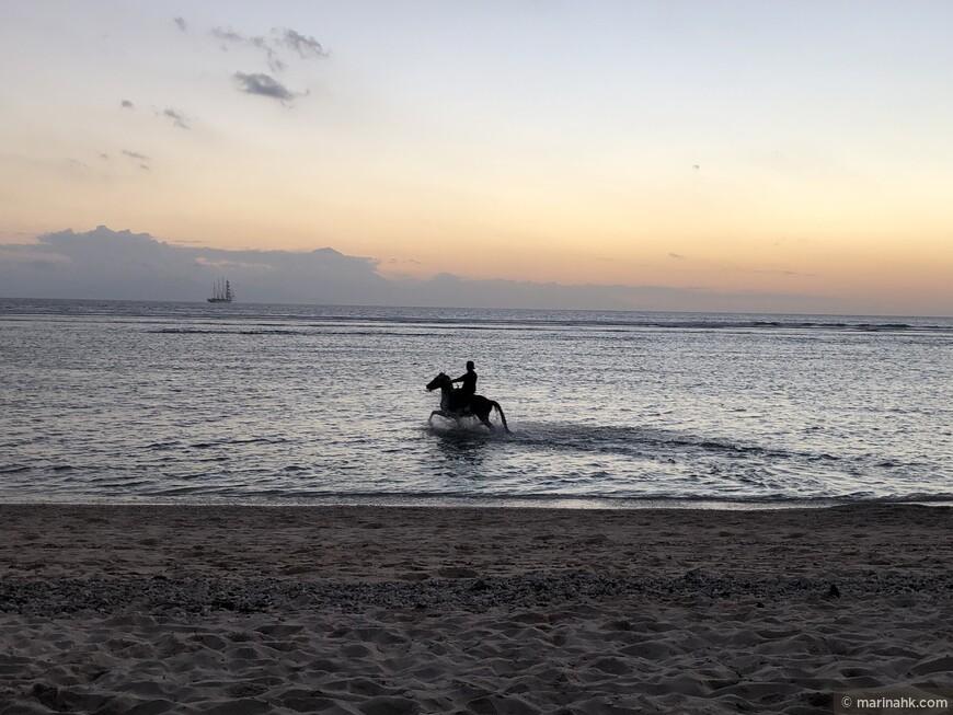 Вечером можно пакататся на лощадях . На острове Гили Траванг имеется конюшня .