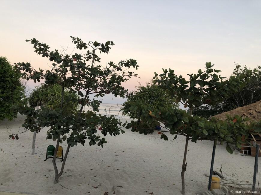 6 утра. Вид на пляж. Темнеет и  светает здесь рано, впрочем как во всей Юго-Восточной Азии.