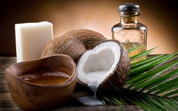 В Доминикане пройдёт Фестиваль кокосов