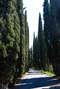 Грузия (день 6). Тбилиси: холм Сололаки, крепость Нарикала, Ботанический сад, район Абанотубани, театр марионеток Резо Габриадзе