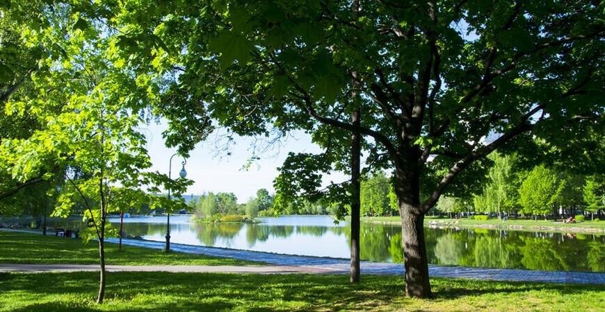 Парк «Ангарские пруды»