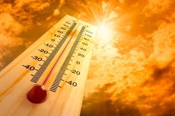 Июнь 2019 года стал самым жарким в мире за последние 140 лет
