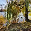 Сормовское озеро