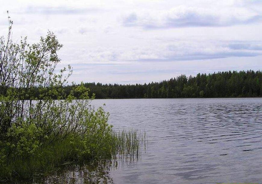 нестеровское озеро рыбалка