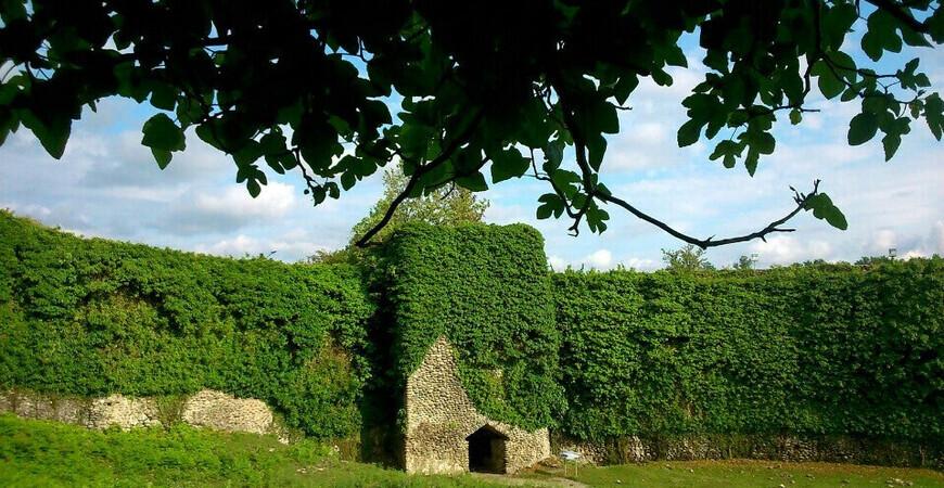 Рухская крепость