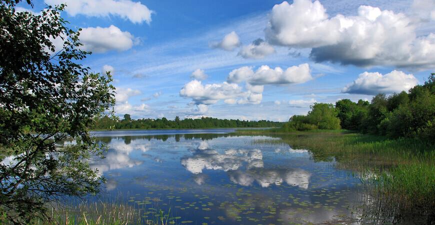 Озеро Врево в Лужском районе