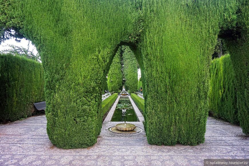 Сад Хенералифе  - один из самых старых мавританских садов.