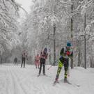Спортивный парк отдыха имени Лазутиной в Одинцово