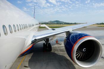 Птица попала в двигатель самолёта «Аэрофлота»