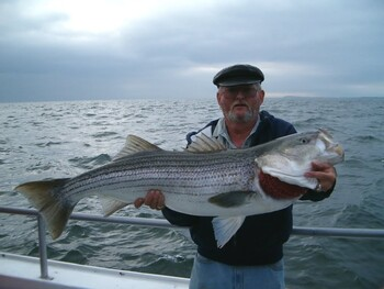 Агрессивная рыба напала на туристов на побережье Испании