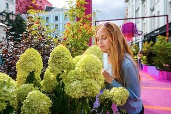 В Москве пройдет фестиваль Цветочный джем