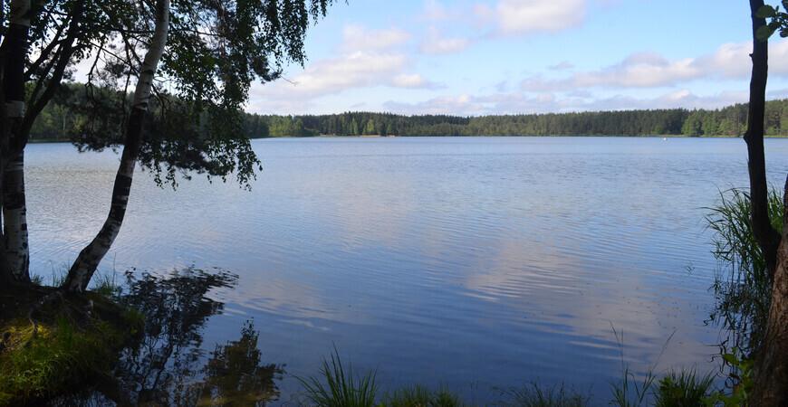 Озеро Белое в Шатурском районе