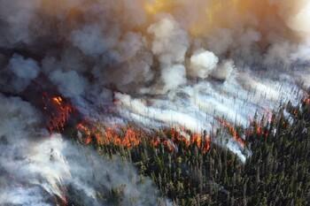 На греческом острове Эвбея объявлен режим ЧП из-за лесных пожаров