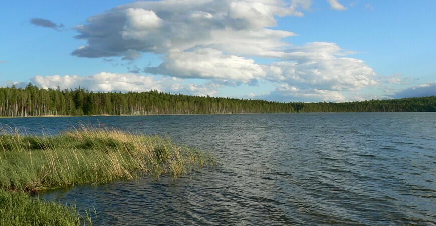 Озеро Светлое в Североуральске