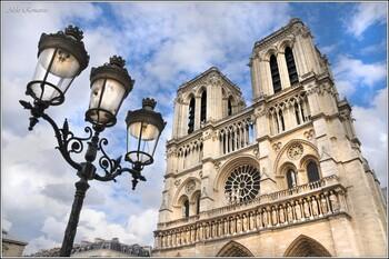 Почву вокруг Собора Парижской Богоматери очищают от свинца
