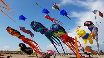 Ближайшие фестивали Москвы
