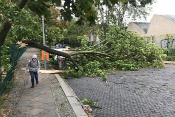 Непогода в Германии нарушила транспортное сообщение с Францией и Швейцарией