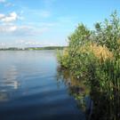 Озеро Круглое в Московской области