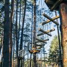 Верёвочный парк «Раздолье» в Пскове