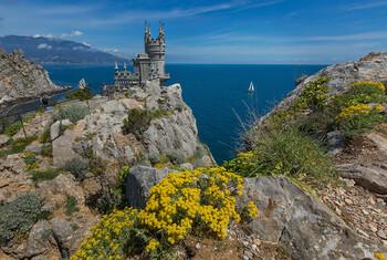 Ласточкино гнездо в Крыму закрылось на реконструкцию