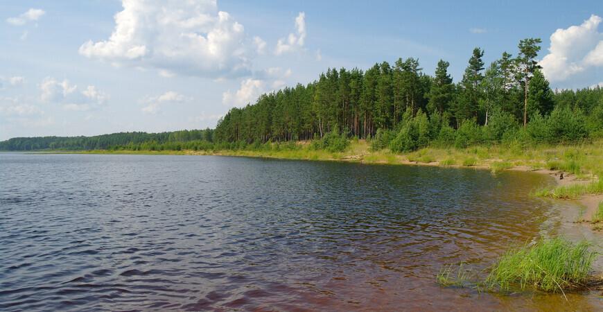 Заказник «Карстовые озера» в Новгородской области