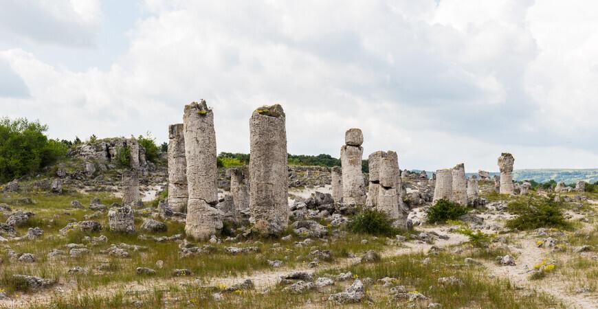 Вбитые камни (Побитые камни/Каменный лес)