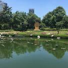 Парк Бенджасири
