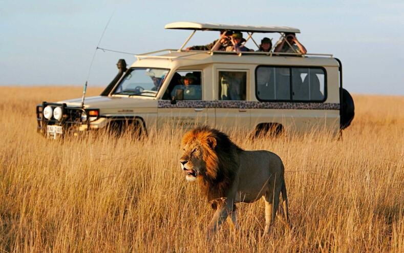 Африка 2021. Экспедиция Туристера
