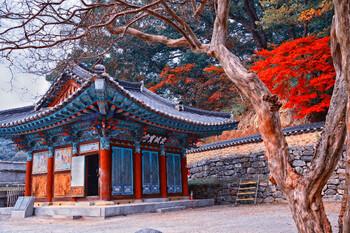 Южная Корея ждёт туристов в сезон «танпхун»