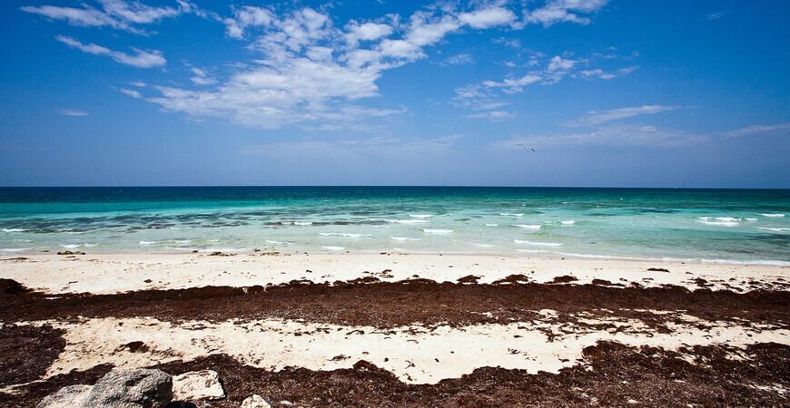 Пляж Лас Кончас