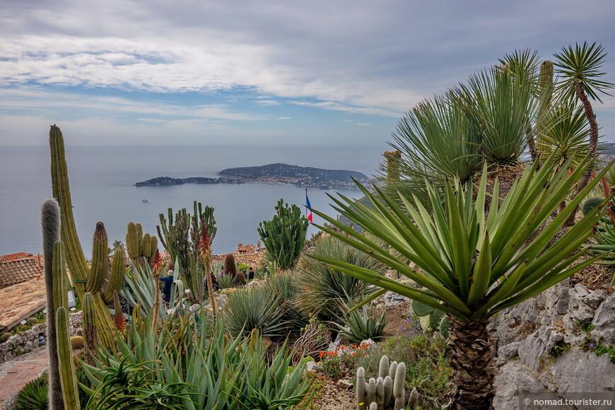 Гуляя по саду, можно и нужно совмещать приятное с полезным - изучать кактусы, стараясь не уколоться, и наслаждаться панорамами.
